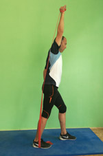 Theraband Krafttraining Triceps