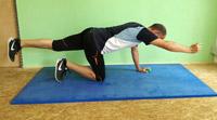 Brasil Workout Vierfüßlerstand