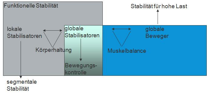 Stabilisierende Core-Muskeln und globale Beweger