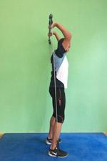 Gymstick Kräftigung Triceps