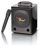 School Cube PWA 730 - 50/80 Watt ohne Funkempfänger