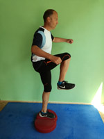 Aerostep Balancetraining Kneelift